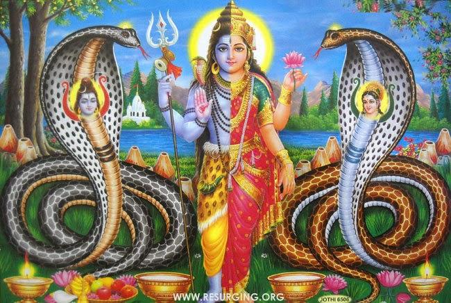 Ardhanarishwara - Lord Shiva: Who is Half woman and Half Man