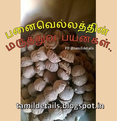 Karuppatti ennum Panai vellatthin Maruthuva Payangal, benefits of palm jaggery