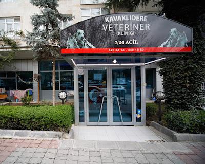 Kavaklıdere Veteriner Kliniği Fotoğrafları