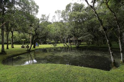 Parque Estadual das Lauráceas preserva 32 mil hectares de Mata Atlântica.