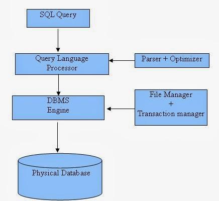 اساسيات قواعد البيانات نظرة عامة على قواعد البيانات  Database Basic SQL Overview