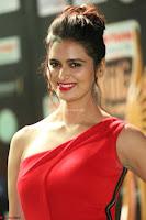 Meenakshi Dixit in Red One Shoulder Red Zipped up gown at IIFA Utsavam Award 45.JPG