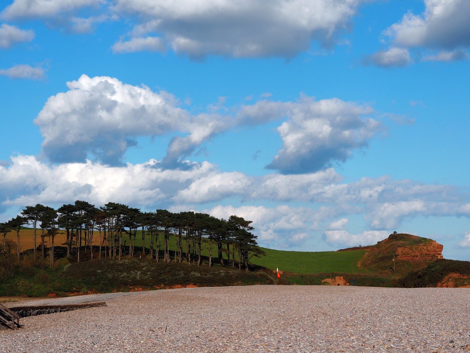 Pebble Budleigh Beach with trees and Jurassic Coast behind, Devon