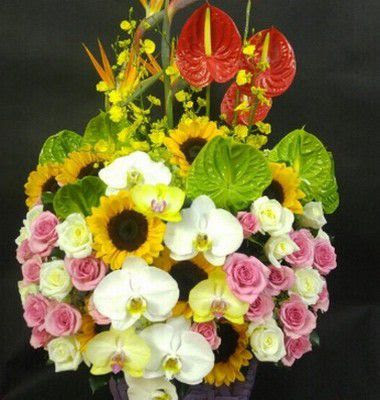 cho hoa sinh nhat cho nam