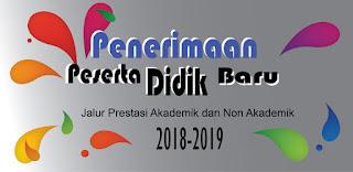 Juknis PPDB Tahun 2017/2018