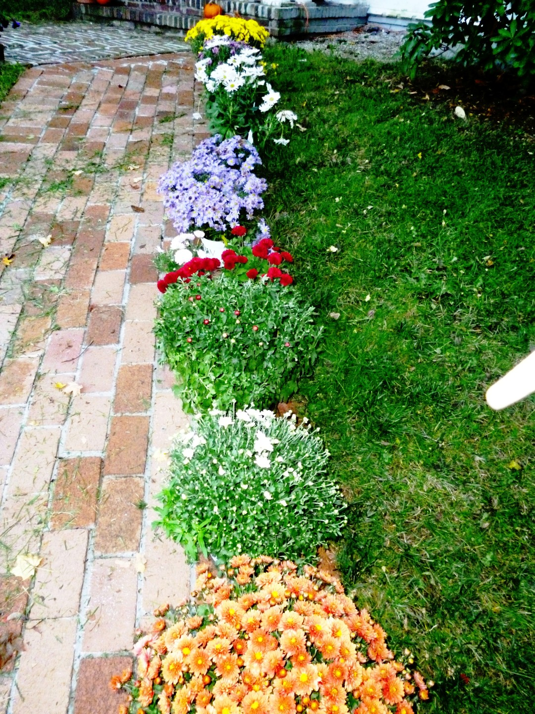 Writing Straight From The Heart: Round Flower Bed Gets