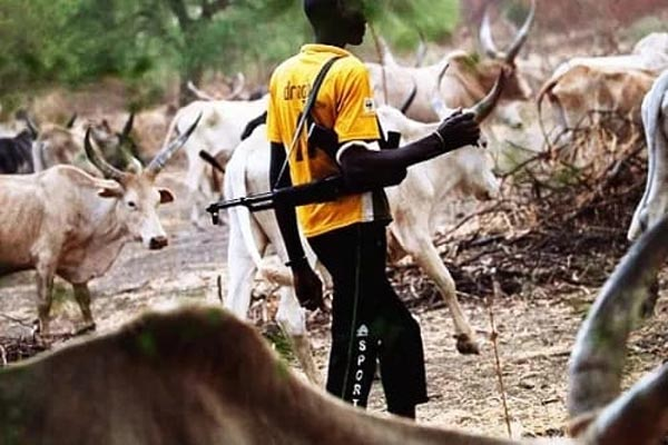 Fulani herdsmen are roaming the streets of Port Harcourt with guns - CAN