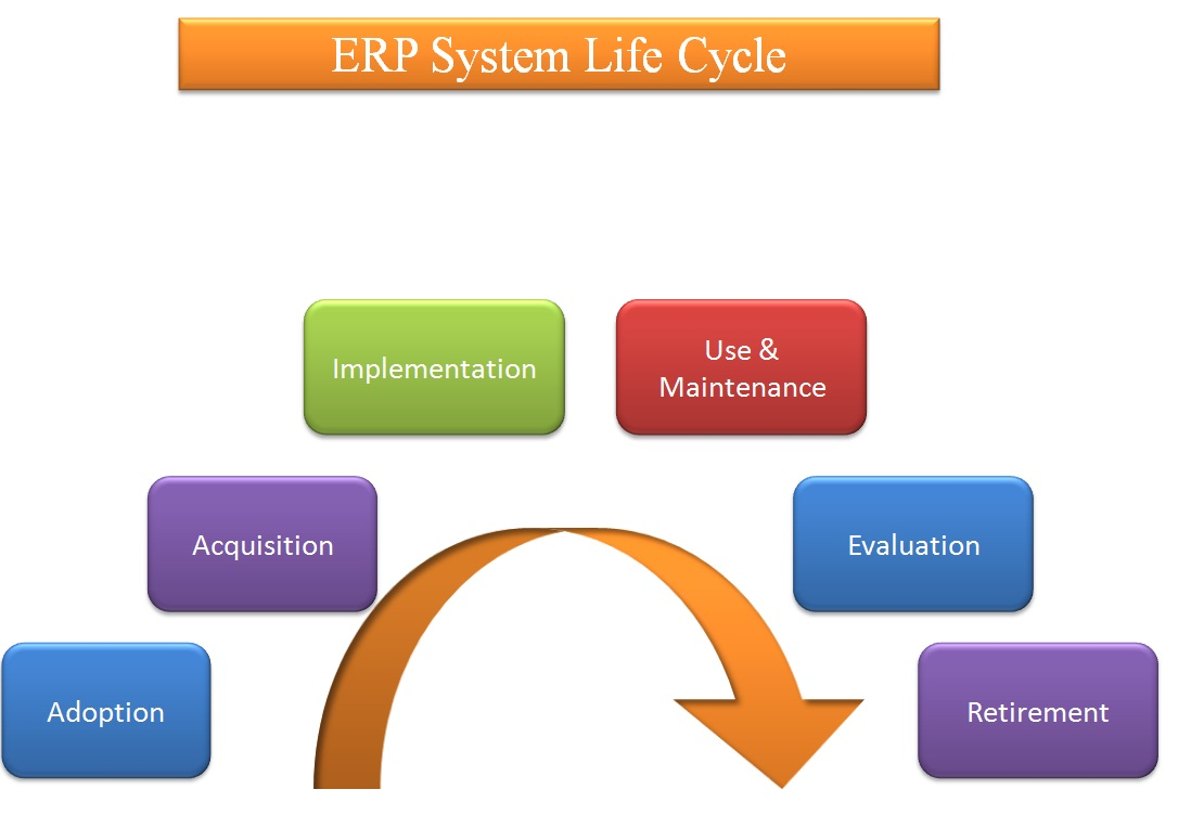 Erp implementation at manco