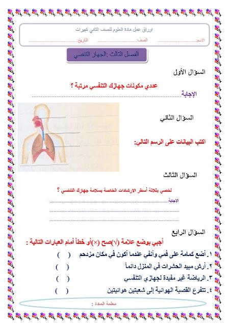 ورقة عمل علوم الجهاز البولي