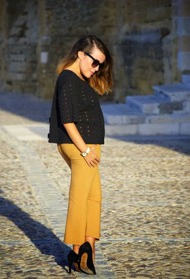 camel_and_black-look