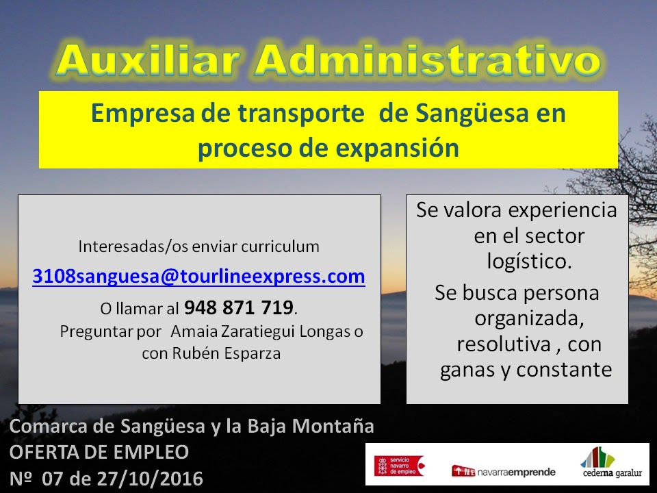 Sangüesa y Baja Montaña: OFERTA DE EMPLEO EN SANGÜESA: Auxiliar ...
