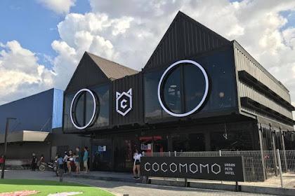 Cocomomo Pet Hotel