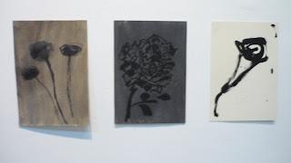 Muestra Manual de Jardinería de Teresa Gabaldón Centro Cultural Chacao Sala La Caja Dic 2017 a Feb 2018