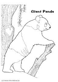 Giant Panda Coloring Pages