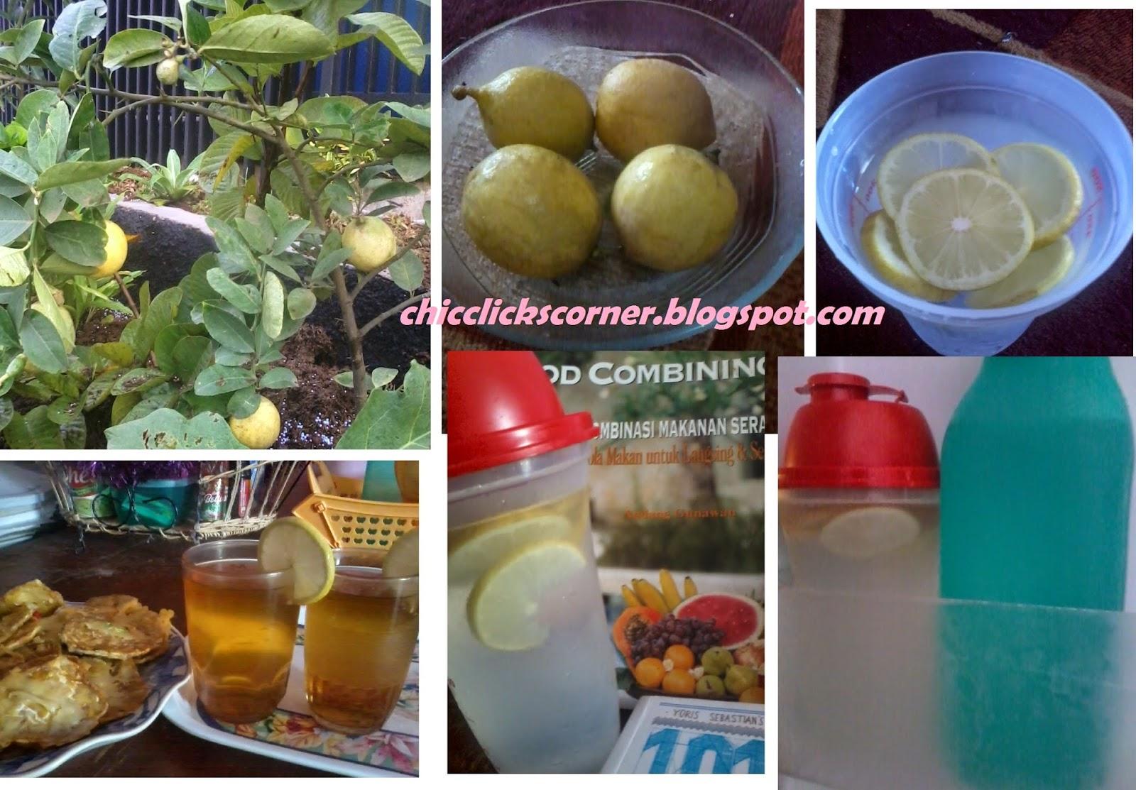 35 Manfaat dan Khasiat Infused Water untuk Kesehatan, Kecantikan Serta Efek Samping