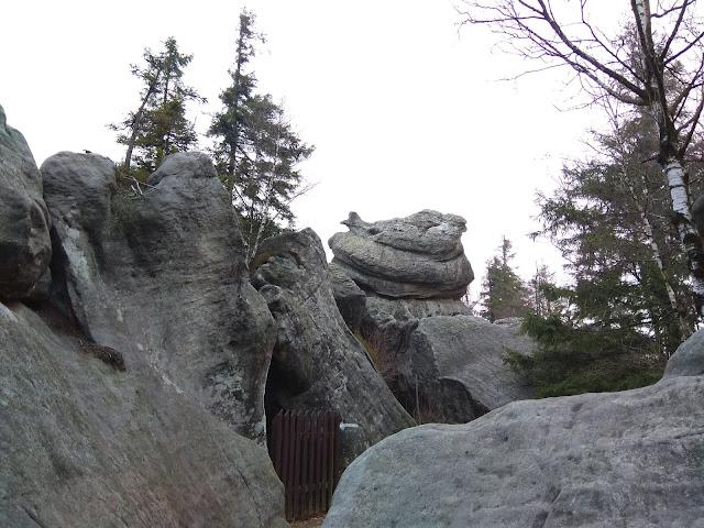 Szczeliniec Wielki - Park Krajobrazowy Gór Stołowych, Kurka