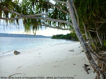 Mansinam is a small tropical island in Manokwari regency of West Papua. Photo: Charles Roring