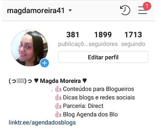 Bio do Instagram centralizada