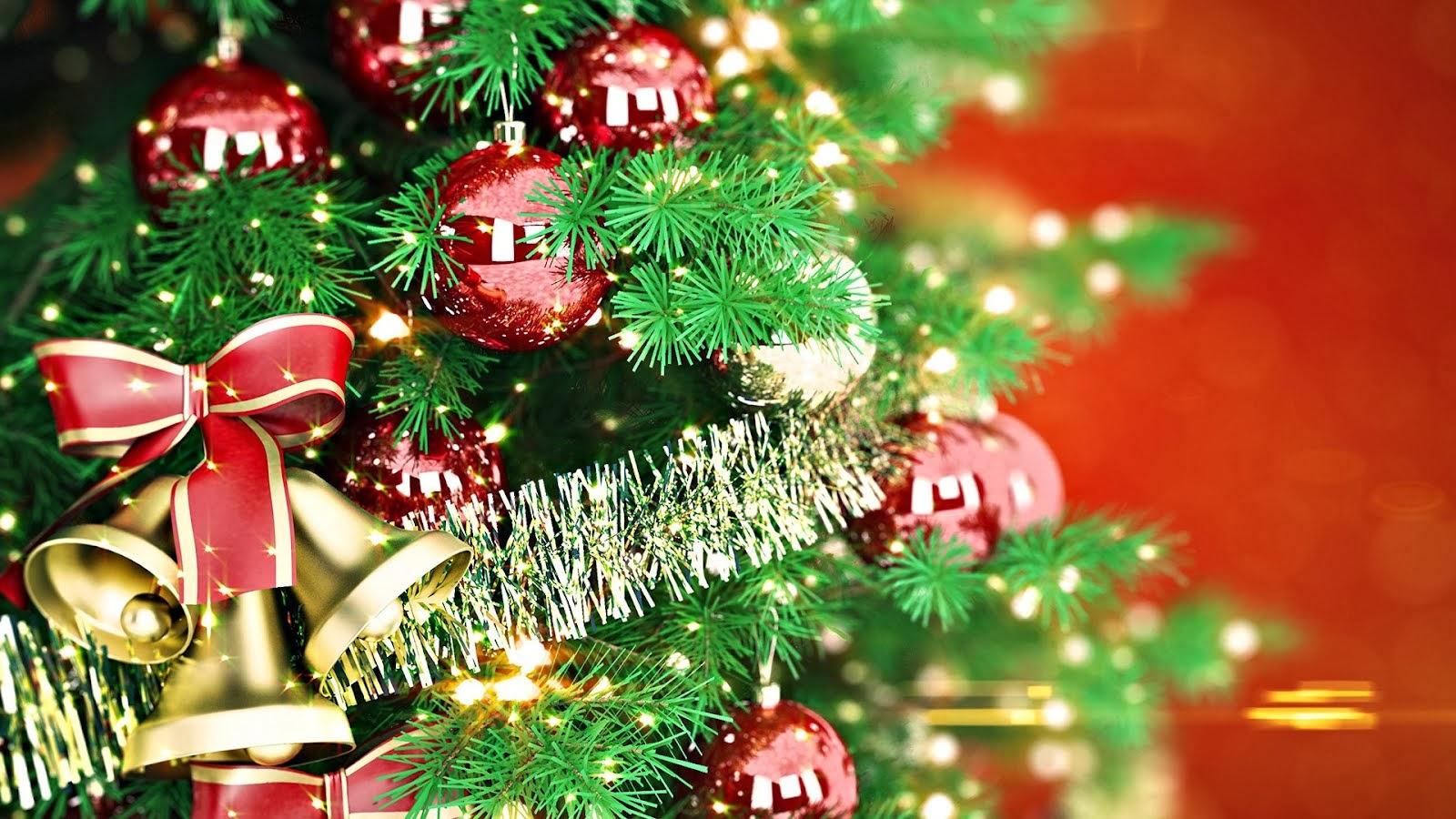 Albero Di Natale Hd.Il Mondo In Un Giardino L Albero Di Natale Dalle Origini A Oggi