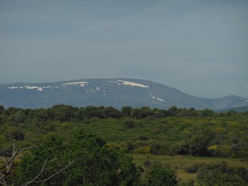 Sierra Leon, Camino, Jola Stępień