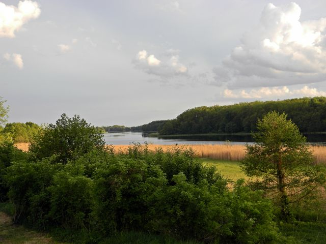 jeziora, ryby, lubuskie, Babimojszczyzna