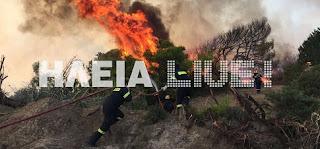 Ηλεία: Υπερβολικά πολλές πυρκαγιές πριν την αντιπυρική