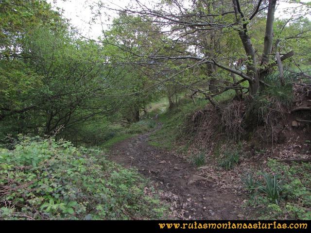 Ruta Ablaña Llosorio:  camino al pico Llosorio
