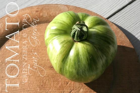 """""""Green Zebra Tomato"""""""