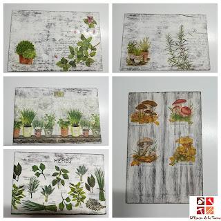 diy cuadros con plantas aromaticas