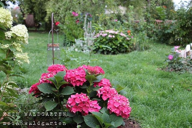 mein waldgarten blau so beautiful. Black Bedroom Furniture Sets. Home Design Ideas