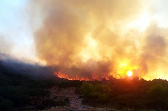 Καταγγελίες σοκ: Έχουμε 14.000 πυροσβέστες αλλά μόνο 300 πήγαν στις φωτιές