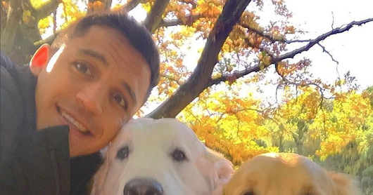 "REVEALED: Alexis Sanchez rejected Juve move because his dogs are ""loving London""."