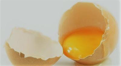 Apakah Makan Satu Butir Telur Per Hari Dapat Mencegah Stroke?