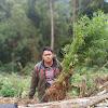 Polres Kerinci Temukan Ladang Ganja Seluas 2 hektare di Kerinci
