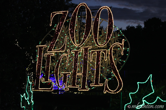 Houston's Zoo Lights