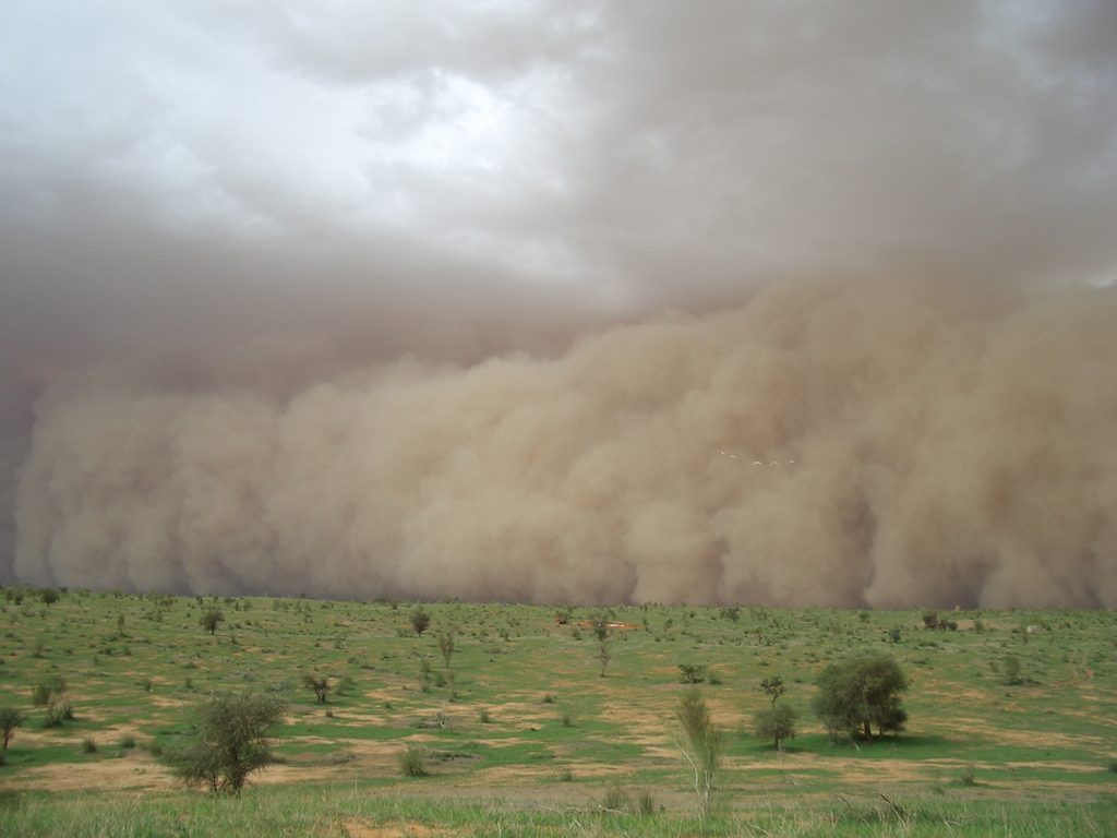 Sand Storm Every Thing Is Here