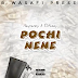 New Audio|Rayvanny x S2Kizzy_Pochi Nene|Listen/Download Now