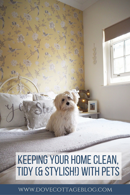 Keeping your home clean, tidy and stylish with pets from dovecottageblog.com