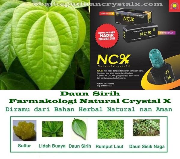 Sirih - Farmakologi Crystal X - NCX NASA