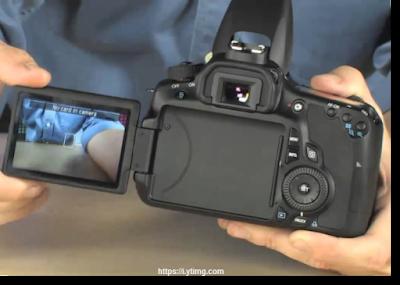 Spesifikasi dan Harga Kamera Dslr Canon Eos 60D
