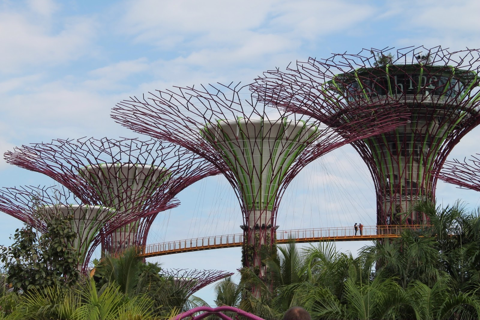 Four Things to do in Singapore