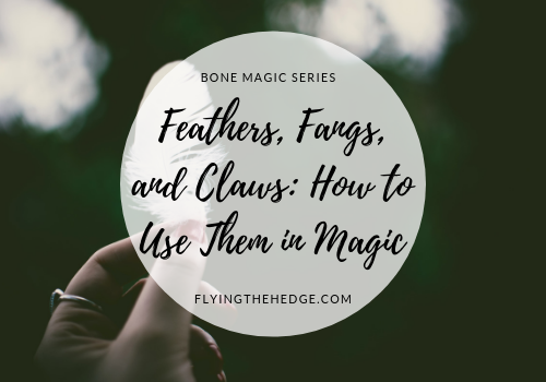 Bone Magic Series: Feathers, Fangs, and Claws: How to Use Them in Magic