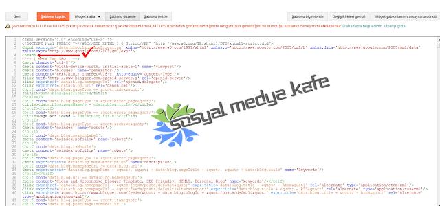 Blogger Meta Tag Seo Ayarları