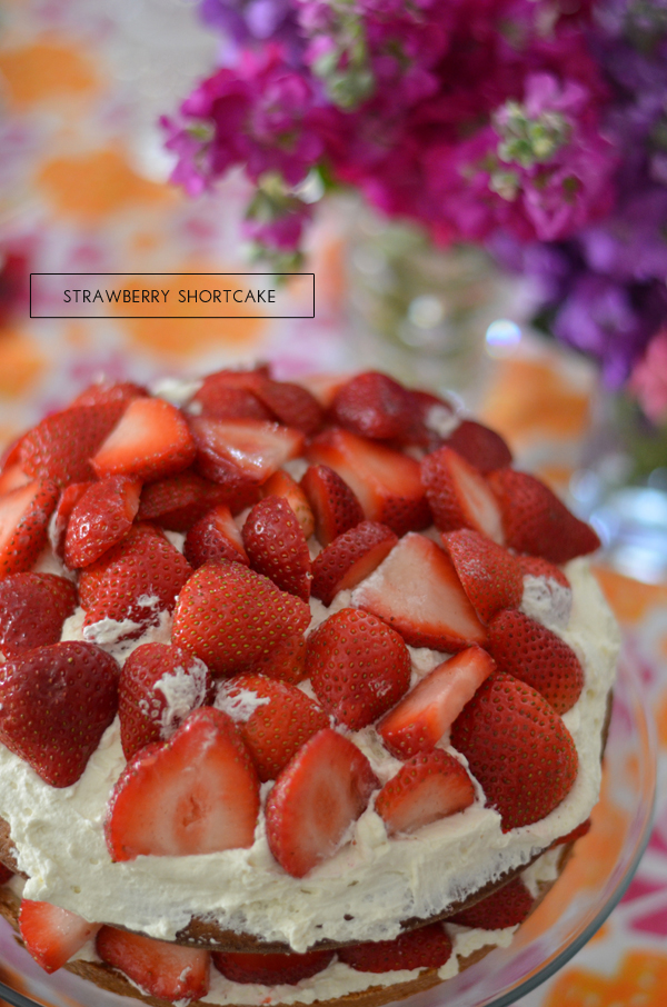 Strawberry cake, Mimosa Lane Blog
