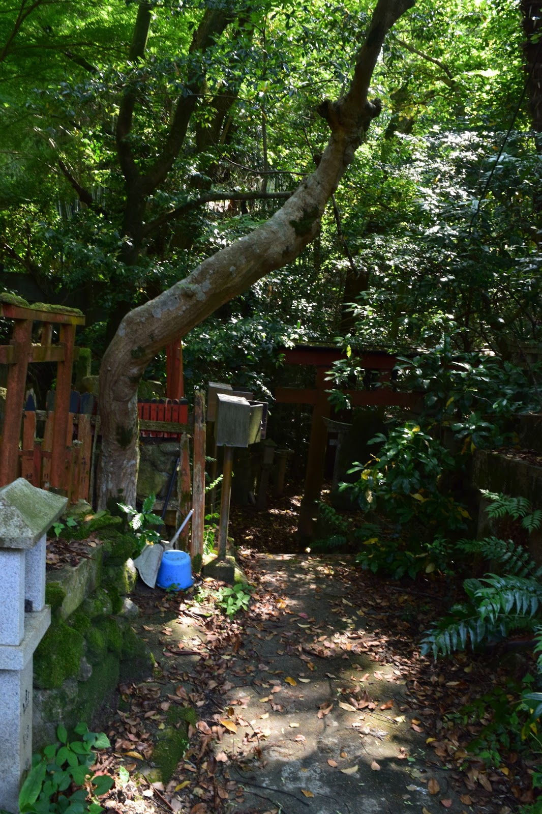 Abandoned shrine Kyoto