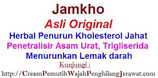 Agen jual obat alami kolesterol JAMKHO herbal ASLI penurun LDL