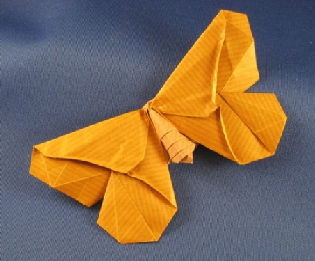 Origami Butterfly Moth Lafosse 3D