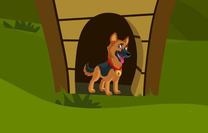 German Shepherd Dog Escape