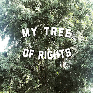 My Tree Of Rights Desperately Seeking Surnames
