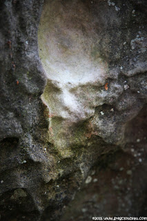 L'esprit du grès, Fontainebleau, (C) 2016 Greg Clouzeau